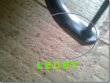 lecet (Small)