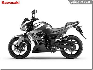 ninja-250-naked_thumb1