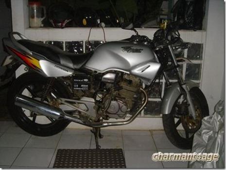 tiger 2000