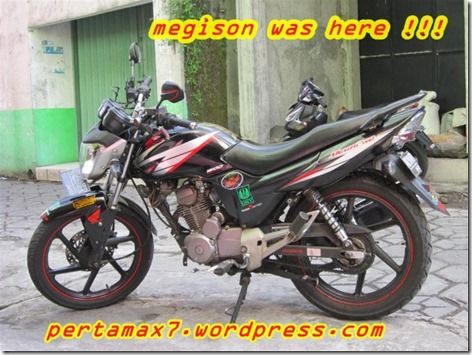 megison (Small)