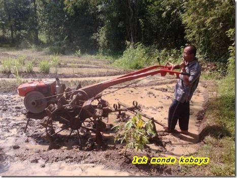 traktor sawah the real matic adventure (Small)