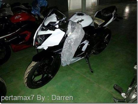 Kawasaki Ninja 250 RR mono