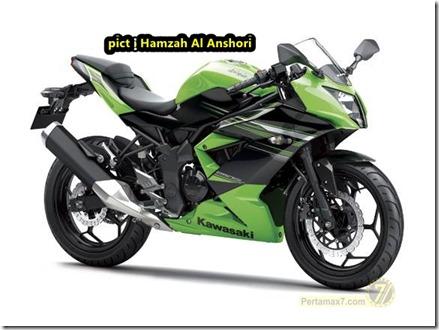kawasaki ninja 250 RR MONO 12