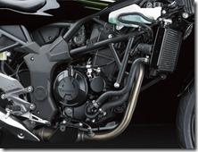 Kawasaki Ninja 250 RR MONO16