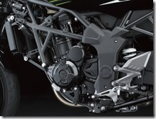 Kawasaki Ninja 250 RR MONO17