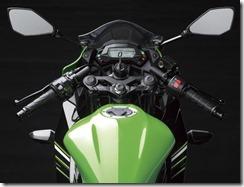 Kawasaki Ninja 250 RR MONO22