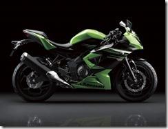 Kawasaki Ninja 250 RR MONO23