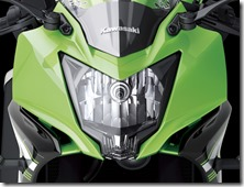 Kawasaki Ninja 250 RR MONO29
