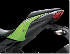 Kawasaki Ninja 250 RR MONO30