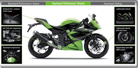 Kawasaki Ninja 250 RR MONO39