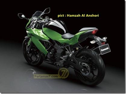 kawasaki ninja 250 SL hijau