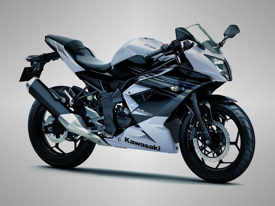 kawasaki ninja RR mono 250 white