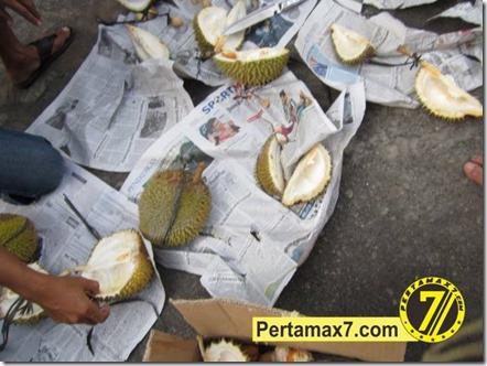 pesta durian pertamax7.com 028 (Small)
