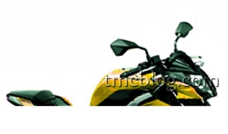 Kawasaki Z 250 SL2