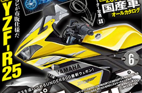 yamaha R25 young machine