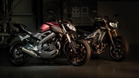 2014-Yamaha-MT125-EU-Anodized-Red-Static-009
