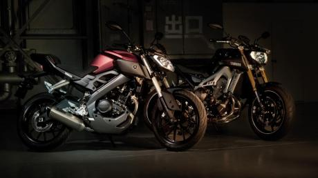 2014-Yamaha-MT125-EU-Anodized-Red-Static-009