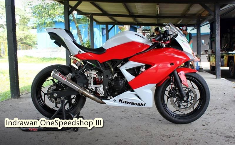 IRS Sport Kawasaki Ninja Race 250 2
