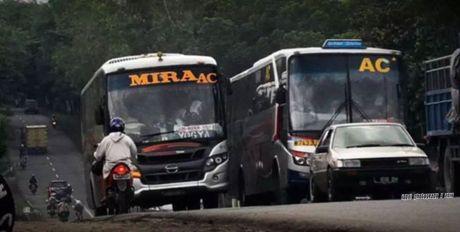 Aksi Ngeblong nekat Bus antar provinsi  7