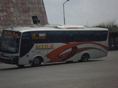 Aksi Ngeblong nekat Bus antar provinsi  8