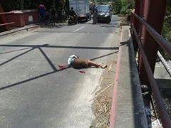 Bocah SD Blitar tewas karena balapan dijalan umum