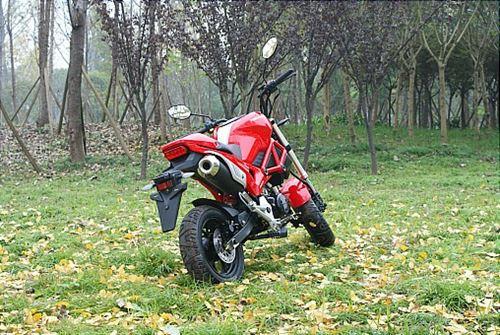 Headlamp Ducati Monster Kw