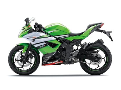 Kawasaki ninja RR Mono Livery WSBK 15_BX250B_WSB_LS pertamax7.com