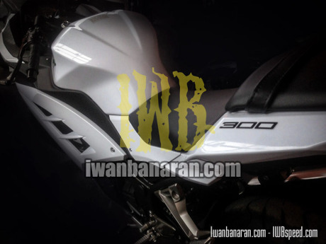 Kawasaki-Ninja300_Indonesia 2015