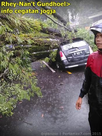 Pohon tumbang depan RS bathesda jogja timpa mobil 1 tewas 001 Pertamax7.com