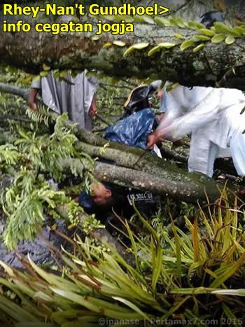 Pohon tumbang depan RS bathesda jogja timpa mobil 1 tewas 003 Pertamax7.com