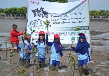 Siswa Sekolah Satu Hati binaan AHM mengikuti penanaman mangrove di desa Pantai Bahagia Muara Gembong (25/6). Memperingati Hari Bumi 2015, AHM bersama ratusan Sahabat Satu Hati melakukan aksi penanaman 1.000 pohon mangrove sebagai upaya perusahaan dalam menjaga kelestarian lingkungan.