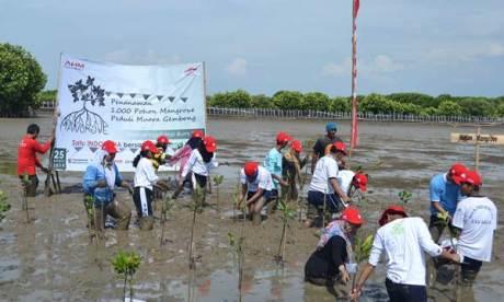 Peringati Hari Bumi, Ratusan Sahabat Satu Hati Tanam 1.000 Mangrove 02  Pertamax7.com