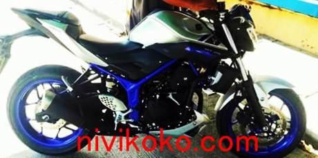 Yamaha MT-25 silver rangka biru