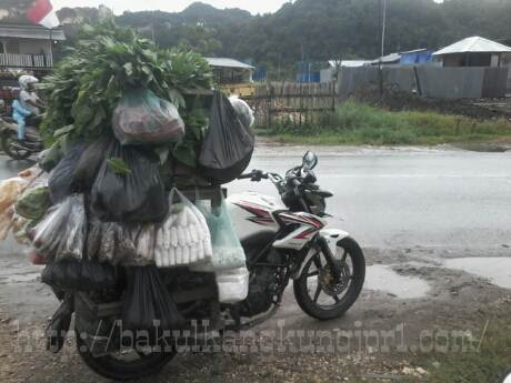 Dimuati Sayur lebih dari 200 KG, Rangka Tralis Honda CB150R patah di Papua 00 pertamax7.com