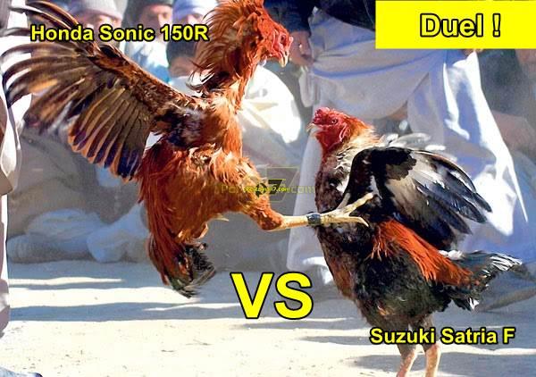 duel ayam jago SUzuki satria F vs Honda sonic 150R pertamax7.com