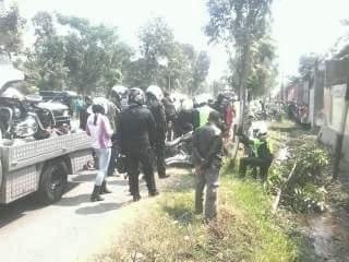 Serempet Vario Mogeh Tabrak pohon di Nganjuk, Sebelum Polisi Datang Sudah Hilang  1