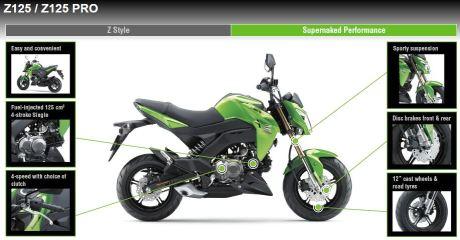 Kawasaki Z125 2016 1 Pertamax7.com