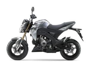 Kawasaki Z125 2016 16_BR125G_GRY_LS Pertamax7.com