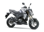 Kawasaki Z125 2016 16_BR125G_GRY_RF Pertamax7.com