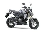 Kawasaki Z125 2016 16_BR125H_GRY_RF Pertamax7.com