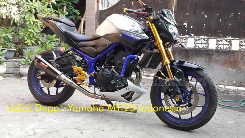 Modifikasi Yamaha MT25 pakai Upside Down Emas ini Nampak JOSS, coba dari pabrikan kayak gini 03 Pertamax7.com