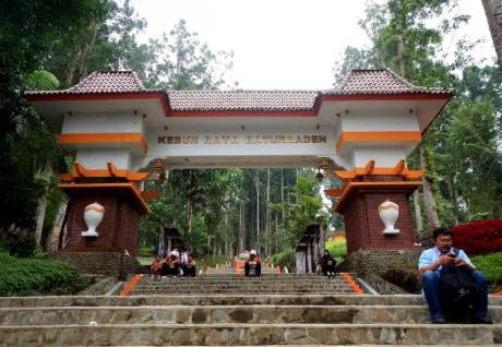 Baru Saja Di Resmikan Gubernur Jawa Tengah, Taman Bunga Kebun Raya Baturraden Di Injak-Injak Pasukan Selfie 02 Pertamax7.com