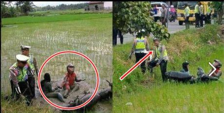 Takut di Tilang, Dua gadis Memilih Terjun Ke Sawah di Jepara pertamax7.com 11